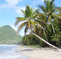 La Martinique vous dévoile ses merveilles !